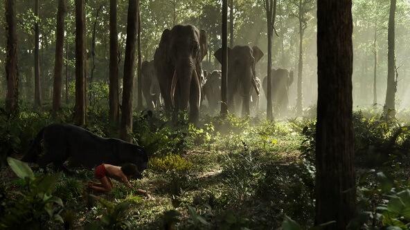 The Jungle Book (Orman Çocuğu) Yükle