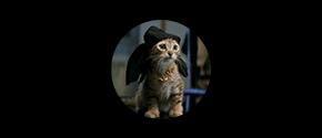 keanu-icon