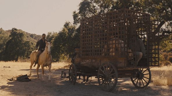 Django Unchained (Zincirsiz) Download