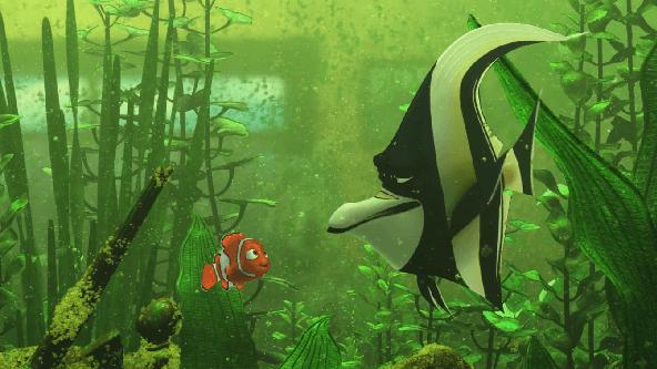 Kayıp Balık Nemo Yükle