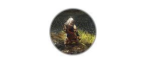 the-witcher-enhanced-edition-directors-cut-icon