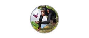 Zoo Tycoon 2 The Ultimate Collection - İcon
