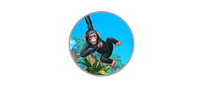 Zoo Tycoon Complete Collection - İcon