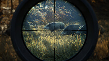 theHunter: Call of the Wild Yükle