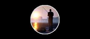 Balık Tutma Oyunu Ücretsiz İndir