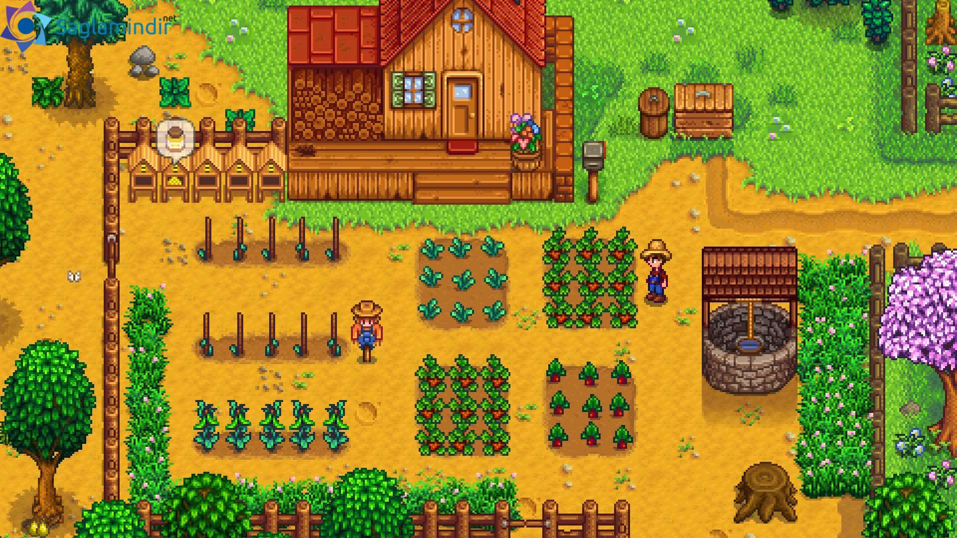 stardew valley full indir