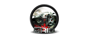 race driver grid icon