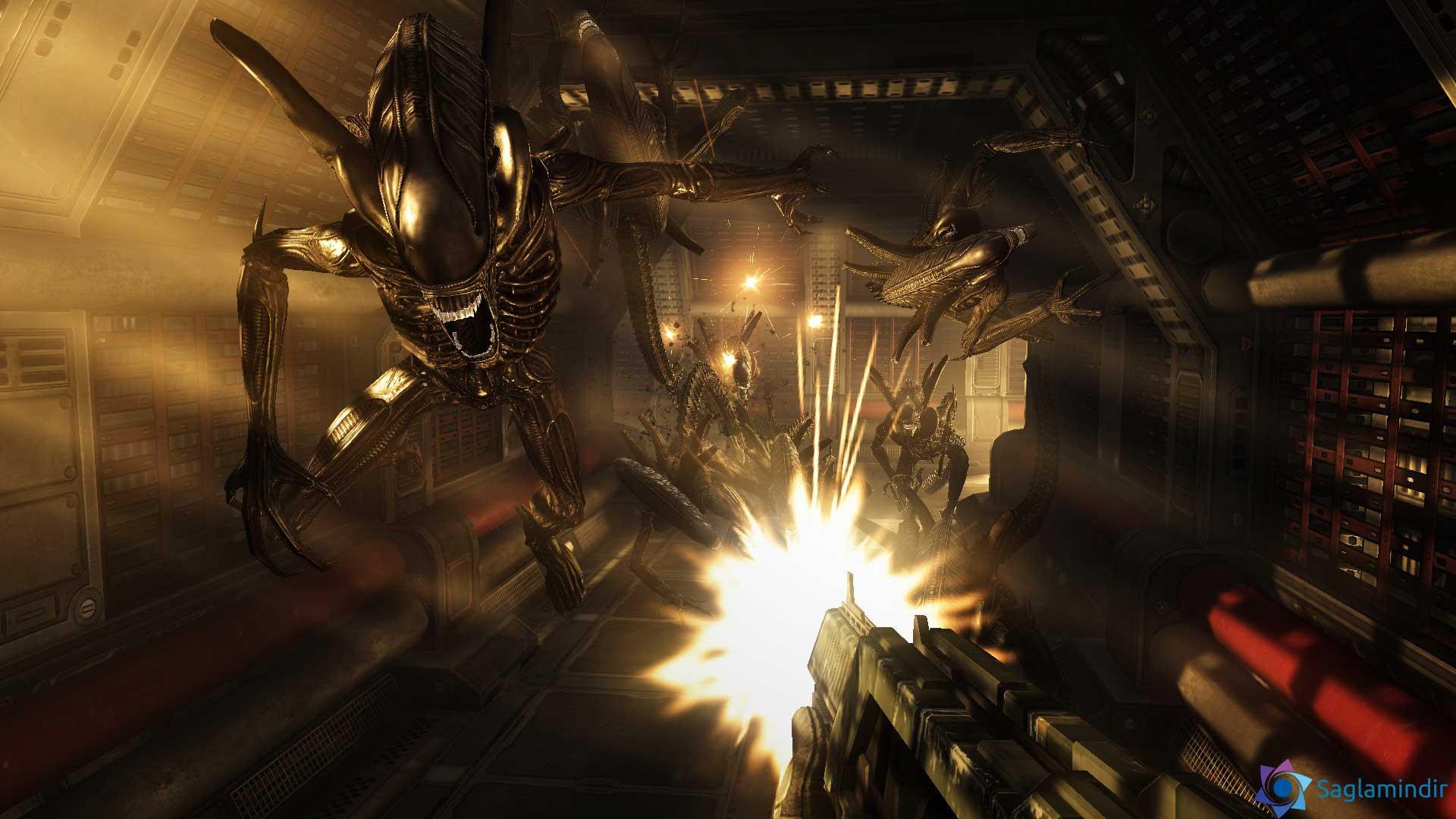 Aliens vs. Predator saglamindir