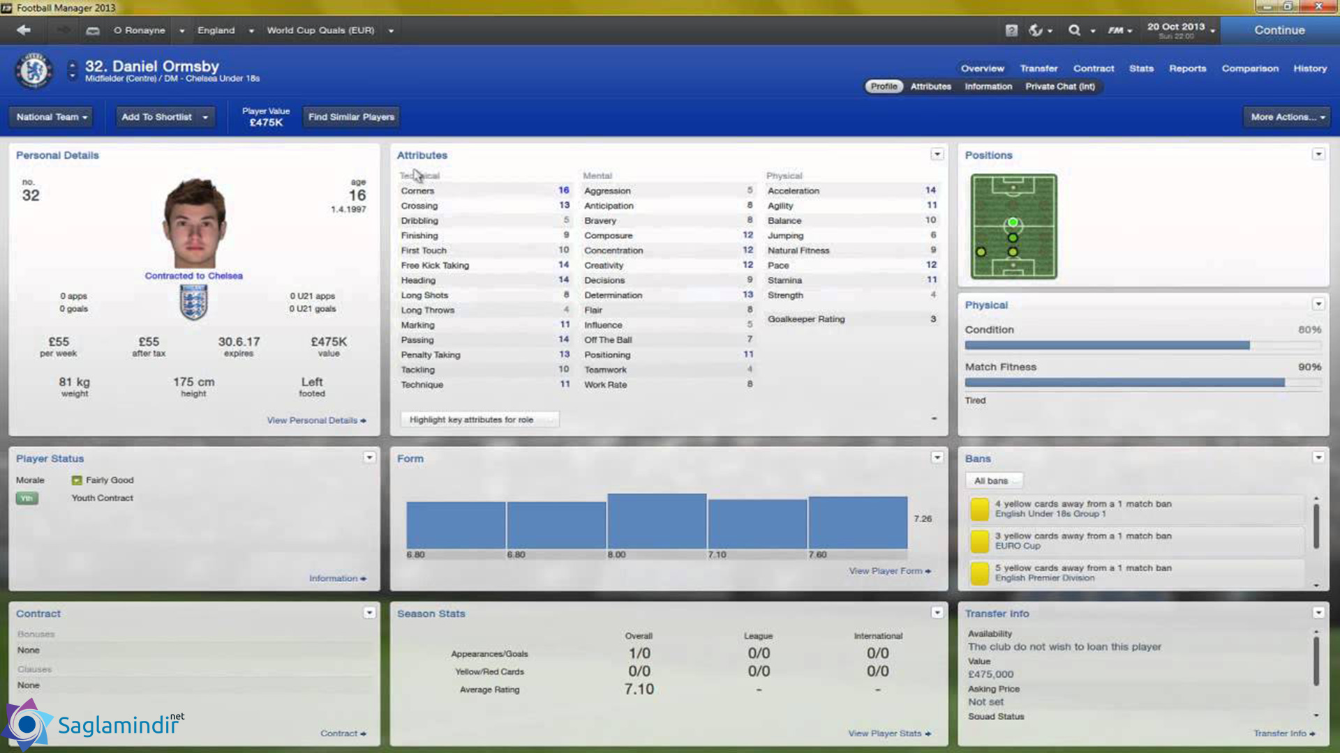 Football Manager 2013 full indir
