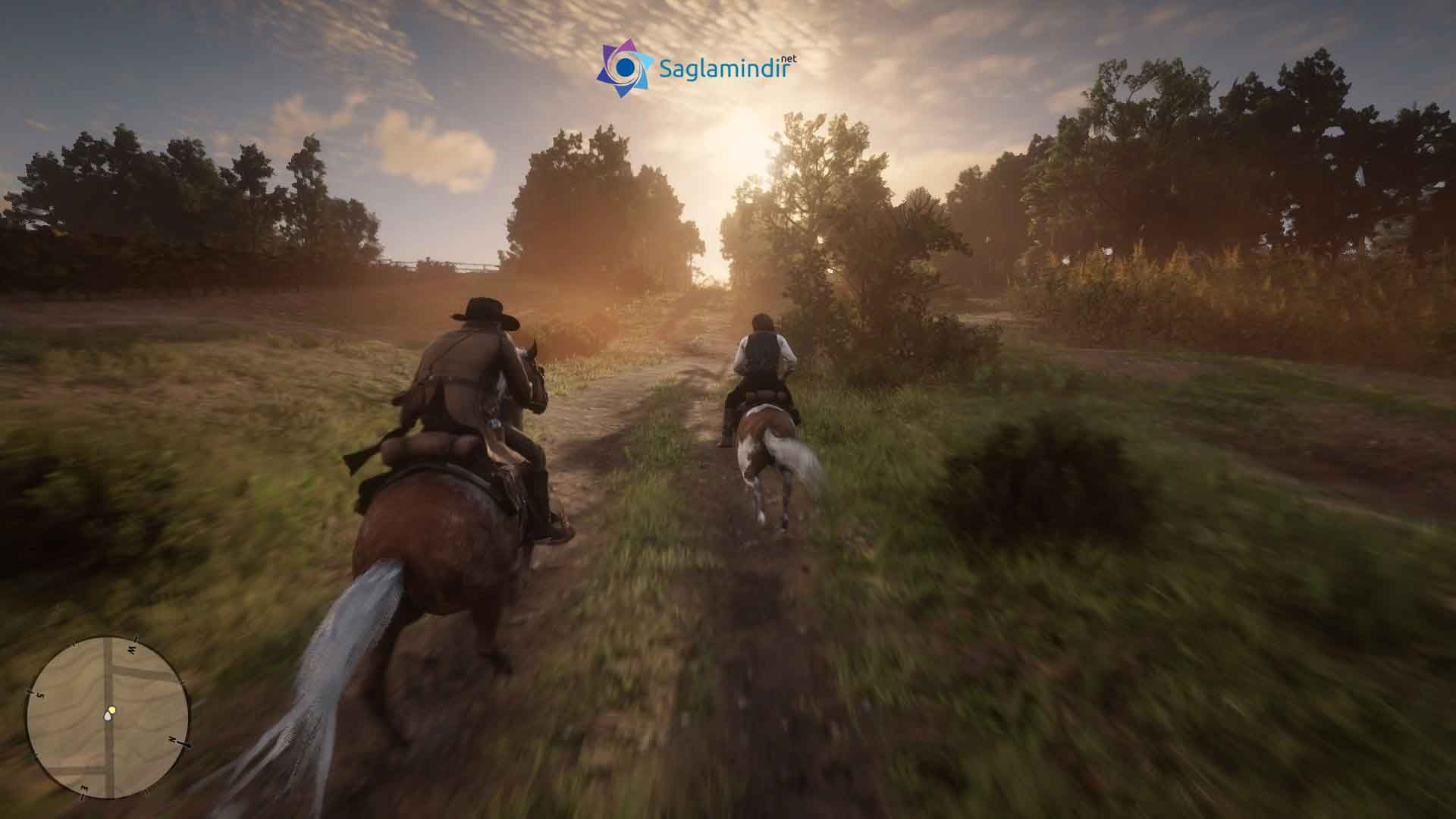 Red Dead Redemption 2 saglamindir