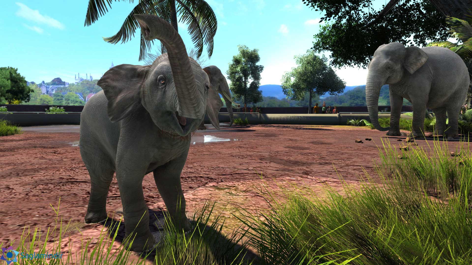 Zoo Tycoon Ultimate Animal Collection torrent indir