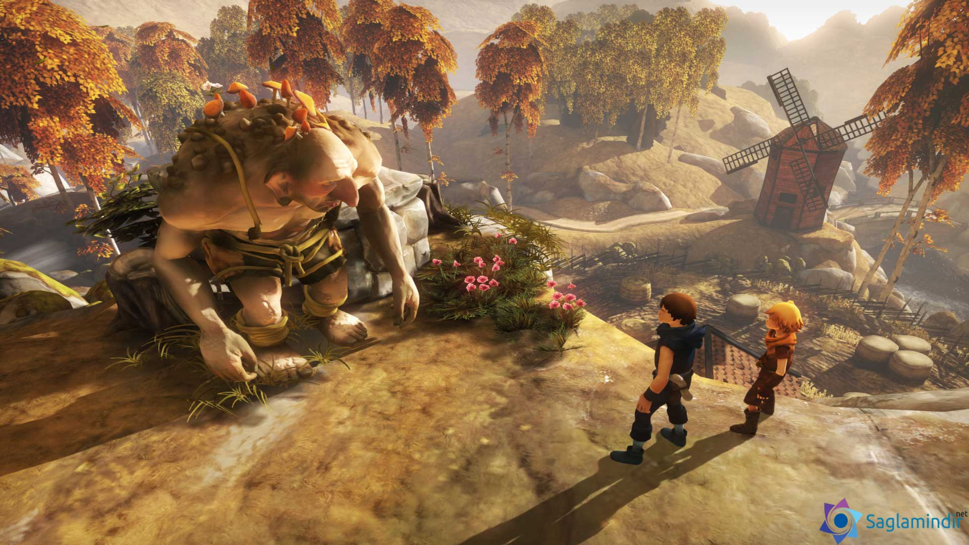 Brothers A Tale of Two Sons full indir