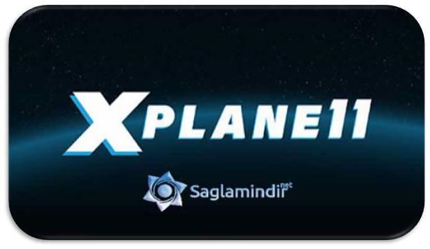 X-Plane 11 indir