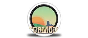 Turmoil icon