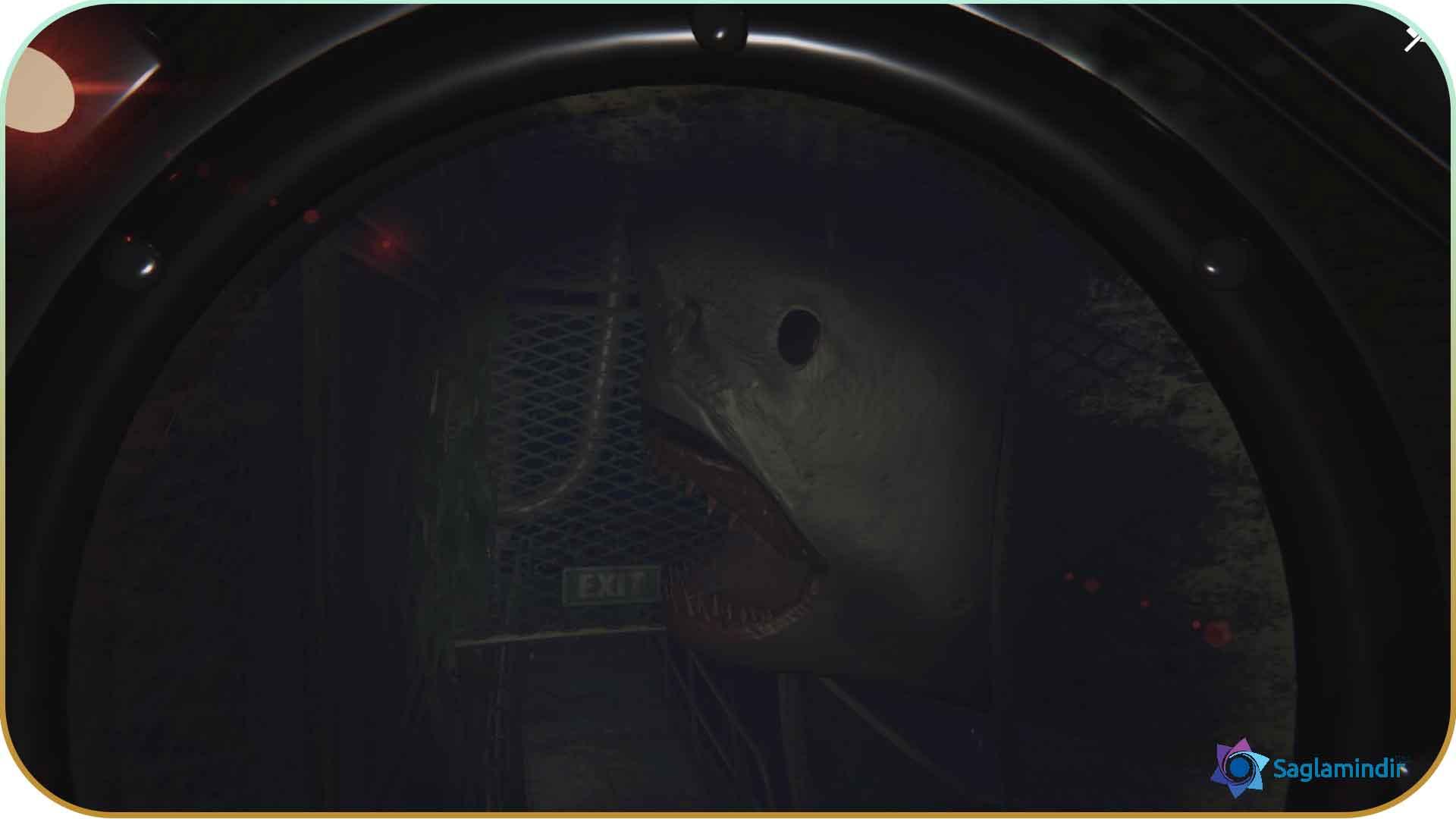 Submersed saglamindir