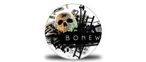 BONEWORKS icon