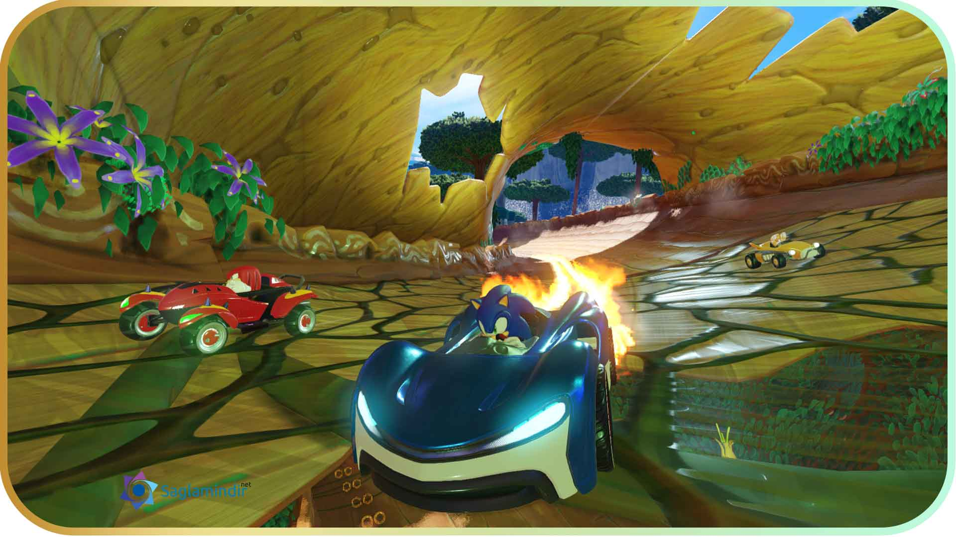 Team Sonic Racing saglamindir