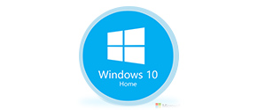 windows 10 home icon